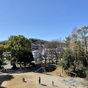 【LDK】からの眺望。自然豊かな公園が見えました。空が広い!