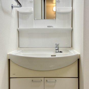 独立洗面台も。朝使う小物は棚に置けそう。