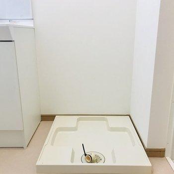 洗面台横に洗濯機がおけます