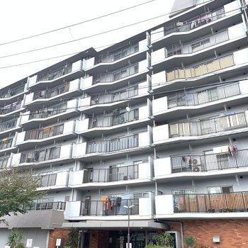 高さはそうでもないのですが、戸数はとても多いマンションです!
