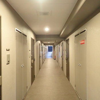 共用部】淡いベージュの廊下です。