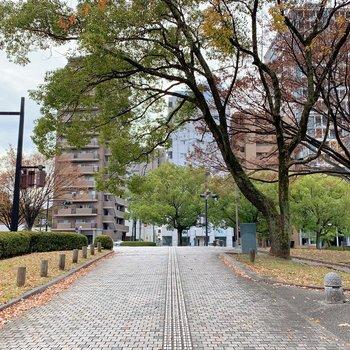 駅までの道もお散歩気分です。