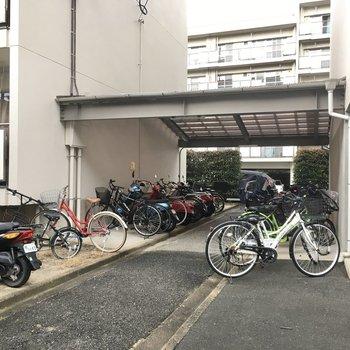 自転車置き場はマンションとマンションの間にありました!