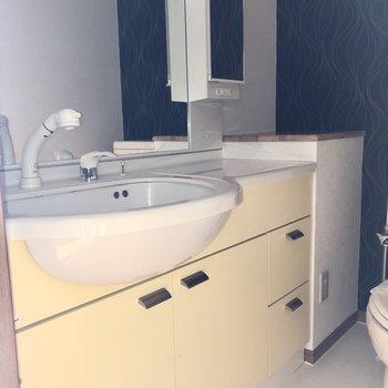 洗面台の鏡は大きくて、幅も広いので身だしなみチェックは簡単にできますね。※ 写真は通電前のものです・一部フラッシュを使用して撮影しています