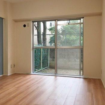 洋室もこの広さ、、、!めっちゃいい!