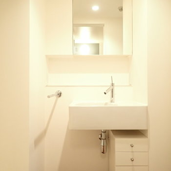 鏡裏は収納です。移動式の小さな収納もあります。