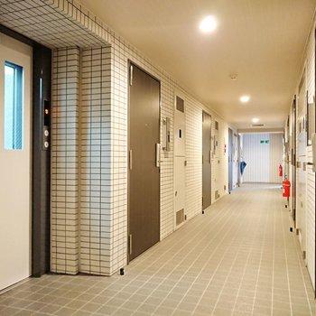 廊下は落ち着いた雰囲気。