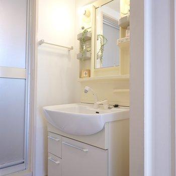 綺麗な洗面台。お風呂出てすぐにあるのがいいね。