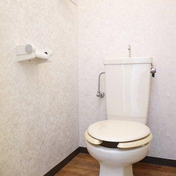 トイレ自体は質素感ありますが、床のクロスが良い味出してます。