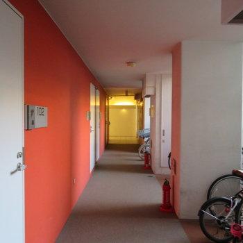 廊下は色鮮やか
