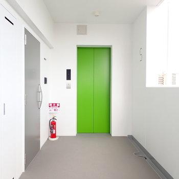 エレベーターの色、楽しい。