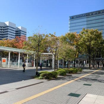 西口は、並木の通りに。オフィスビルも多くあります。