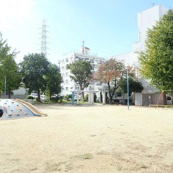 目の前の公園で遊ぼーー!