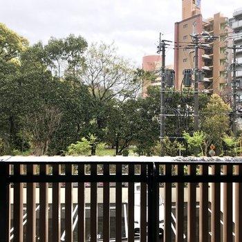 目の前には建物を囲む植栽の一部。都会暮らしでも、ほっと落ち着ける要素の一つです。
