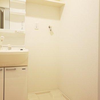 上には洗剤などを置ける棚もあるので置き場にも困らないね