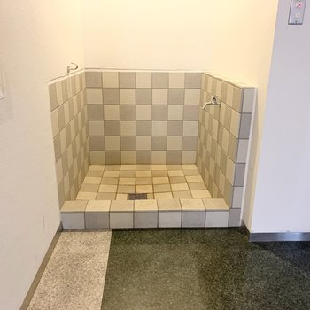 エントランスにわんちゃんの足洗い場が。
