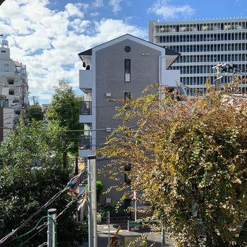 眺望は南東向き。向かいの小さな公園と建物が見えます。