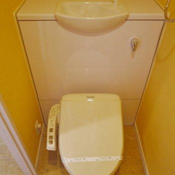 立派なお手洗い◎※写真は同タイプの別部屋