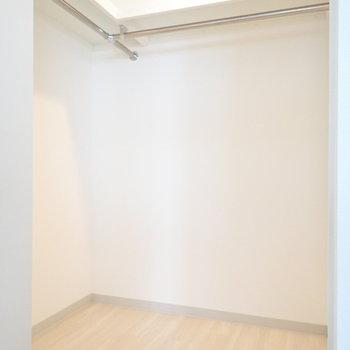 洋室の収納。くるっと回れるくらいの広さです。