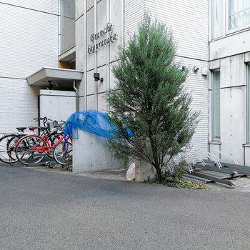 エントランス前に駐輪場があります。