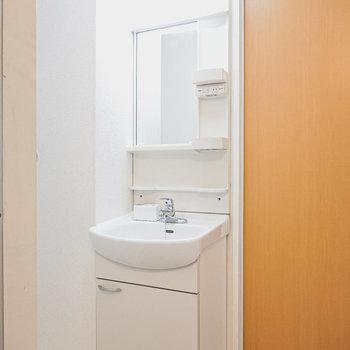 脱衣所を入って右手には棚付きの洗面台。
