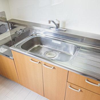 広いシンクと調理スペース。コンロは持ち込む必要があります。