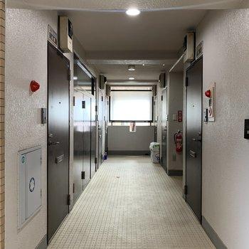 共用廊下の清潔感も◎