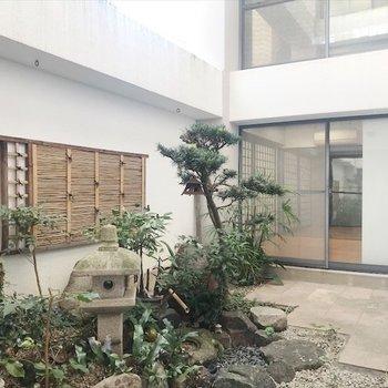 そして、部屋の中心には日本庭園があり、どの部屋からも見えます!