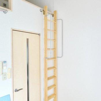 ハシゴは使わないときはドアの横に掛けておくこともできます。