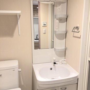 大きな鏡と三段の物置で使いやすい洗面所です。※写真は前回募集時のものです