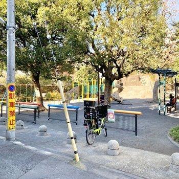 すぐ近くには公園があり、憩いの場所になっています。