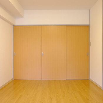 3枚扉の一番左側が収納になっております