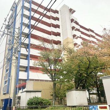 青×赤×白のどーんと建つマンションです。