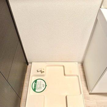 脱衣所に洗濯パン。上部に棚あります◎