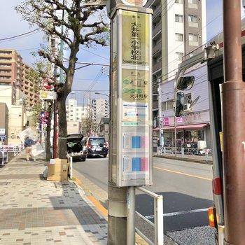 近くにはバス停もあるので、活用してもいいですね。