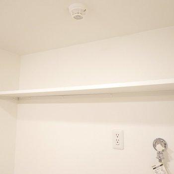 上には棚があるので、トイレ用品や洗剤などはここに。