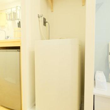 洗濯機の真上に洗剤たちのお家がある