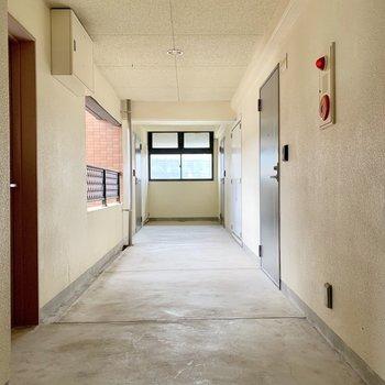 共用廊下は室内だから綺麗。