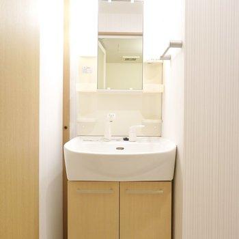 脱衣所内です。ナチュラルな雰囲気で、気持ち良く朝の身支度ができそうな洗面台。