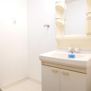 脱衣所内には洗面台と洗濯パンのセット。
