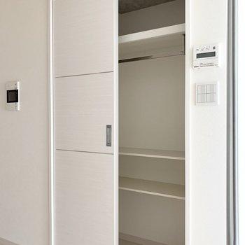 収納はLDKと洋室のドアのすぐ横。