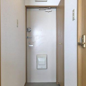 玄関スペースには、、、