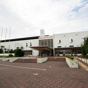 近所には、かなり大きな陸上競技場、体育館のある総合スポーツセンターと