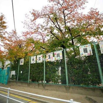 幼稚園が、すぐお隣にあります。