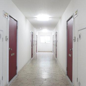 内廊下が嬉しいですね