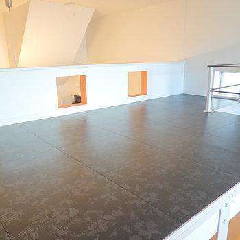 黒い床のロフトは意外と広く、高さも膝立ちで余裕があるほど。