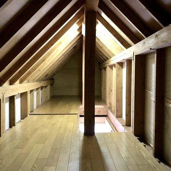ちょっぴりドキマギしちゃうこの空間。物置にぴったりですね。(※写真は1階の同間取り別部屋、清掃前のものです)