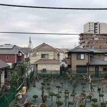 小窓からの眺望は不思議な木たちと住宅街。