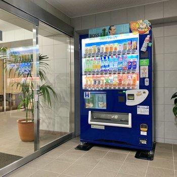 自動販売機が1階にあり、気軽に飲み物をポチッと。