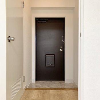 左側の扉はサニタリーへつながっています。